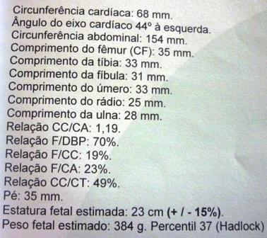 Exame ultrassom morfologico